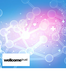 Wellcome Trust Case Study Summary