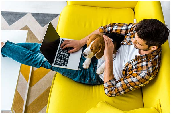 Man working from his sofa with his dog sat on his lap